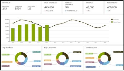 planning software provides reporting views out of the box